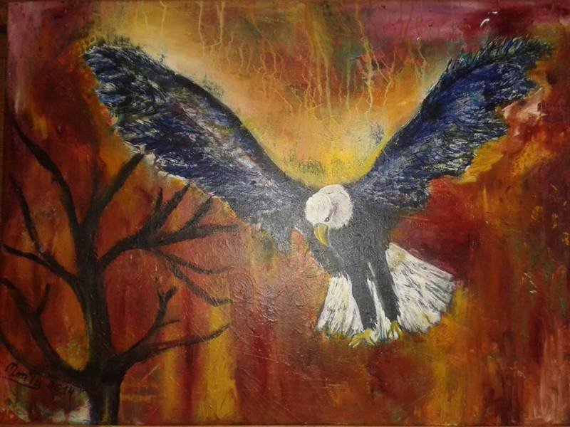 Weißkopfseeadler mixed media auf Leinwand 70 x 50cm